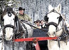bride & groom sleigh